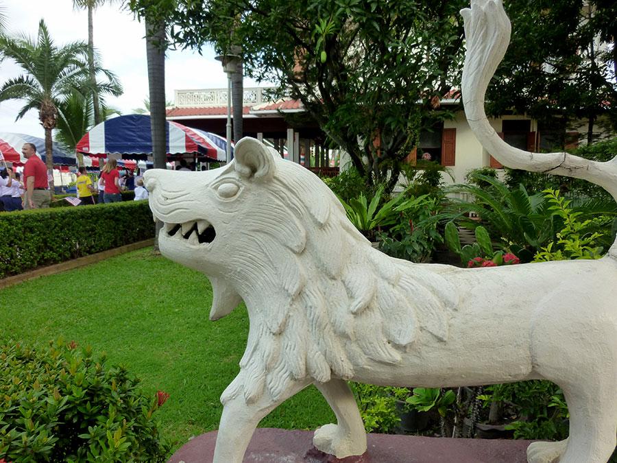 lion-at-consul