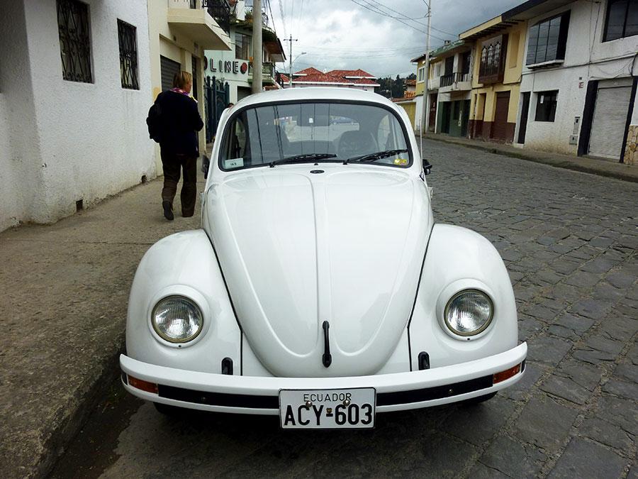 vw-bug