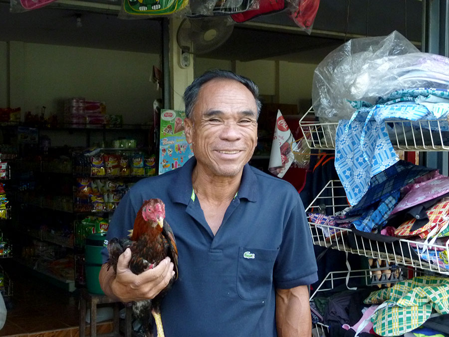 rooster-man