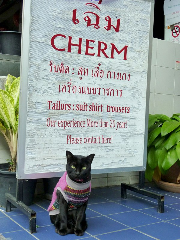 You're welcome. [Chiang Mai, 2014]