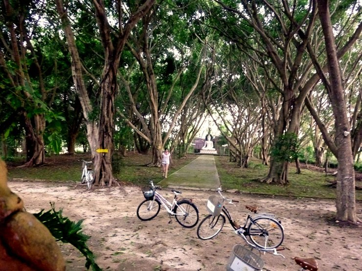 bicycles-bri-and-buddha