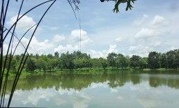 lake-view chiang rai
