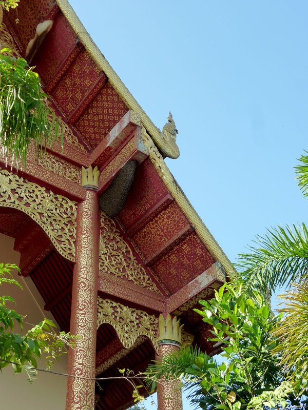 bees-on-the-side-of-temple