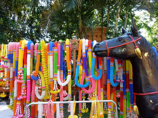 horse-and-leis
