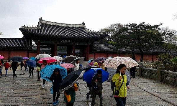 [Gyeongbok Palace, Seoul, 2015]