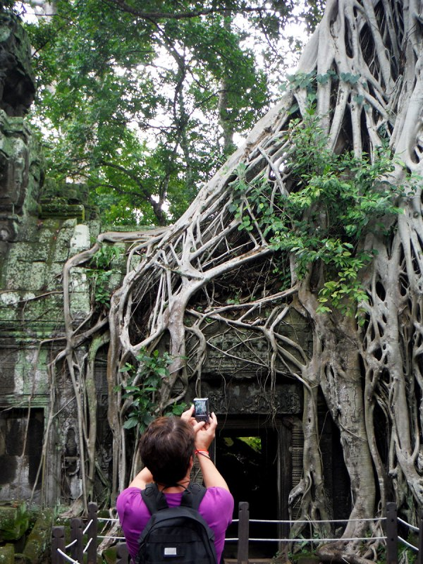 Ta Prohm is where Tomb Raider was filmed. The trees were magical everywhere in the park though.