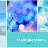 The Changing Seasons - January 2020