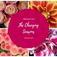 The Changing Seasons - February 2020