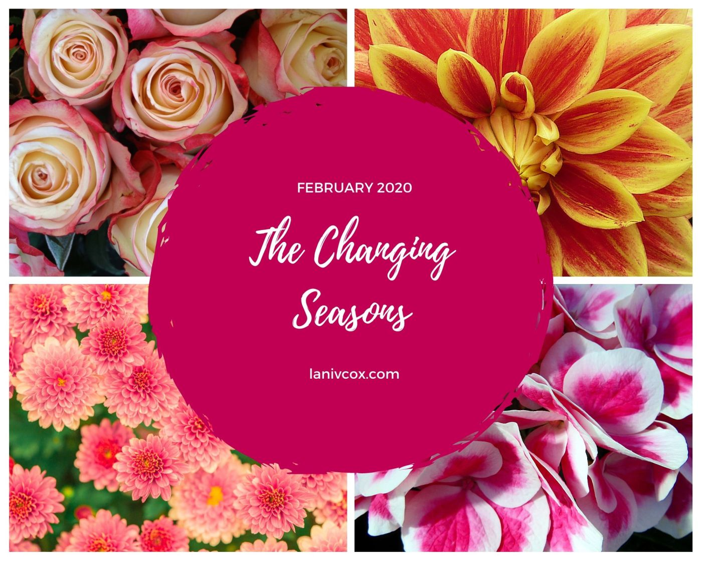 The Changing Seasons Feb 2020