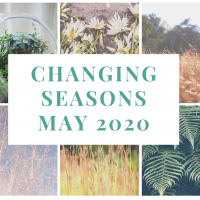 Changing Seasons - May 2020