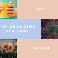 The Changing Seasons - Oct 2020