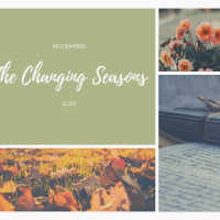 The Changing Seasons - Nov 2020