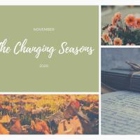 The Changing Seasons - Nov 2020